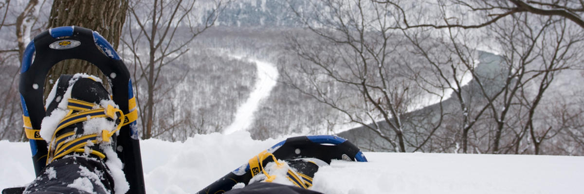 Snowshoeing in the Laurel Highlands