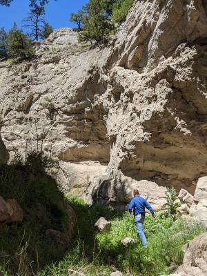 Man walks through a sandstone canyon, full of lush, green foliage.