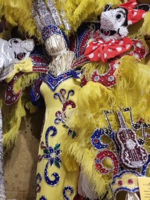 Disney Mardi Gras Costume