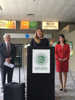 Iris Zimmerman announces Monroe County Girls Sports Festival