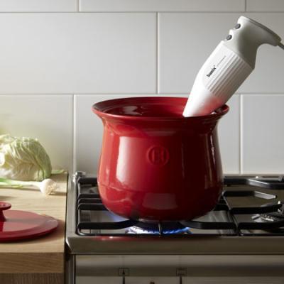 Emile henry Stew Pot