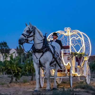 Romantic Carriage Ride