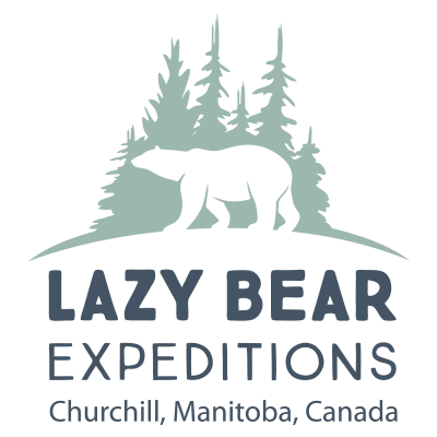 Lazy Bear Expeditions Churchill, Manitoba, Canada