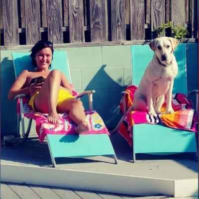 Dog sitting poolside