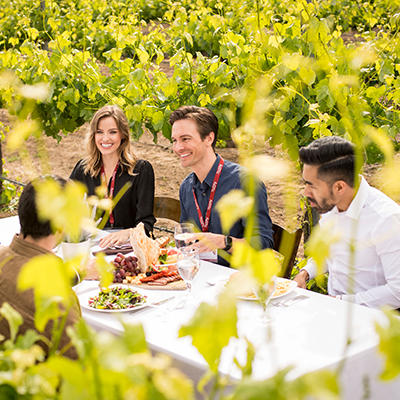 group dining among vineyards