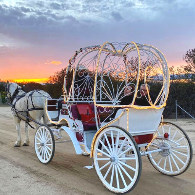 Temecula Carriage Ride