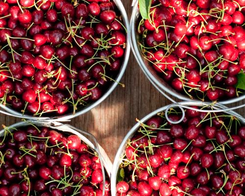 Cherry Pails
