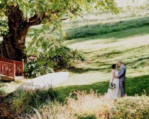 Newly weds embracing at WeatherLea Farm & Vineyard in Loudoun County Virginia