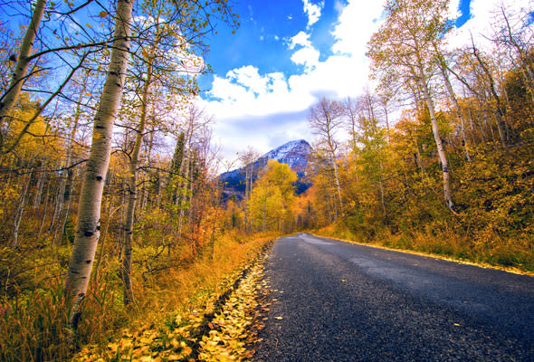 Utah Valley Fall Bucket List Activities - Scenic Drive