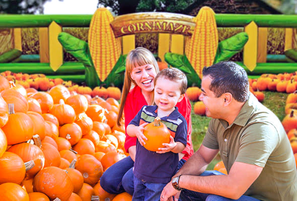 Corn Mazes and Pumpkin Patches