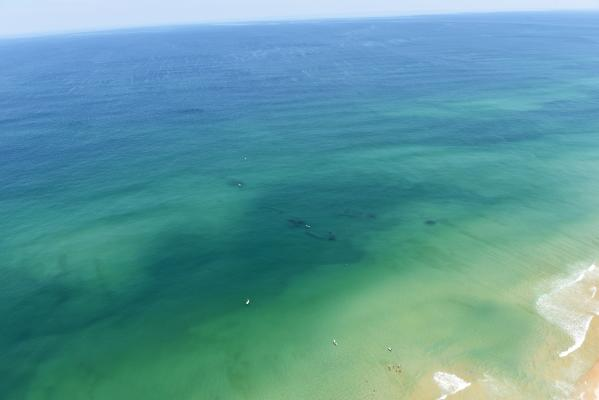 Triangle Wrecks Kill Devil Hills