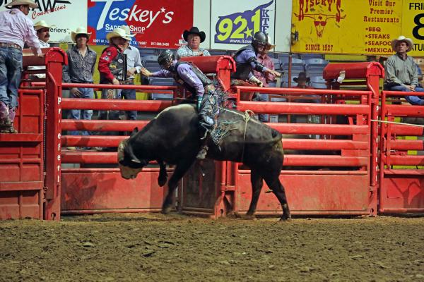 Stockyards Rodeo bull riding 1