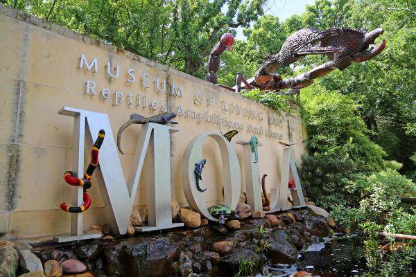 Fort Worth Zoo Mola