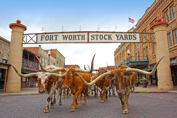 Fort Worth Stockyards