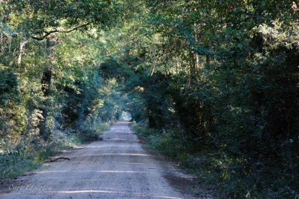 Bragg Road