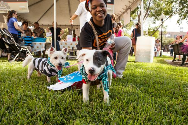 Dogs at the Dogtober Fest