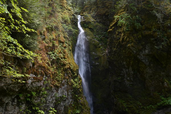 Pinard Falls by Sally McAleer