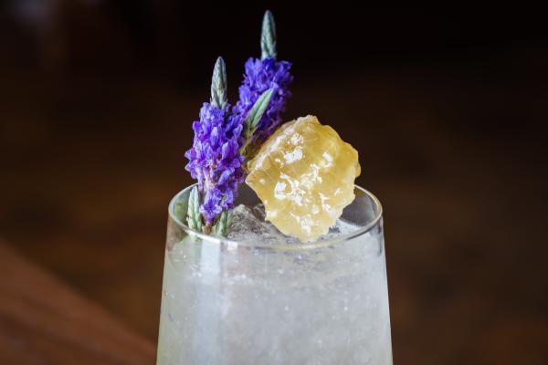 Cocktail Blog - Kai