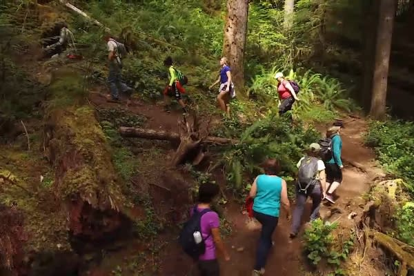 Group hike to waterfalls