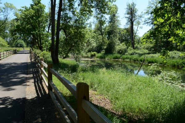 Top Cycling Trails For Families | Eugene, Cascades & Oregon