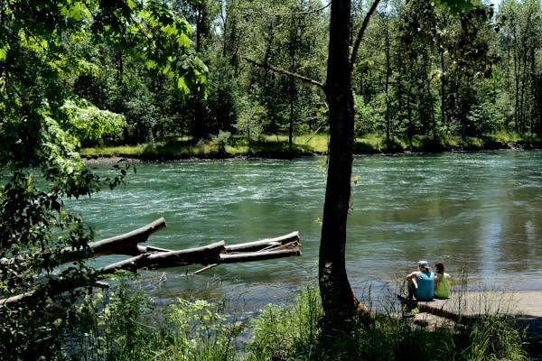 Willamette River, Middle Fork Path by Colin Morton