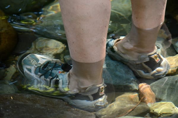 Feet in Brice Creek by Colin Morton