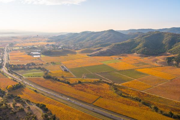 Napa Valley vista in the fall