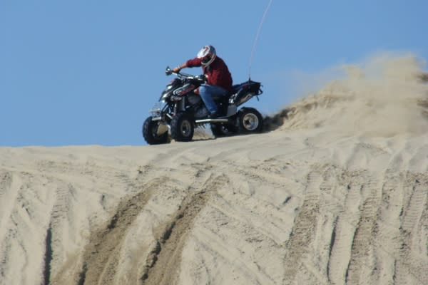 Oregon Coast Dunes Rider by Sheryll Loftin