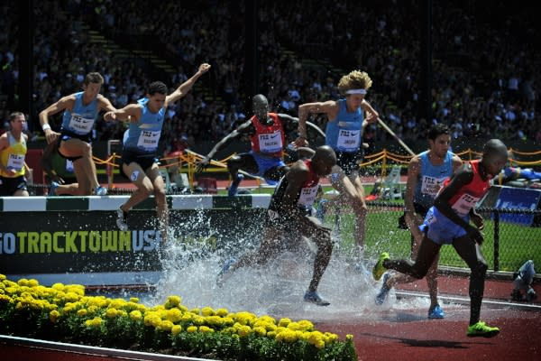 Steeplechase by Buzz Summers