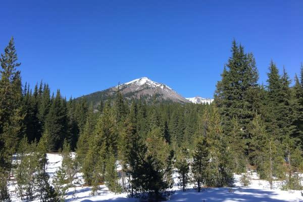 Diamond Peak Wilderness by Bri Matthews