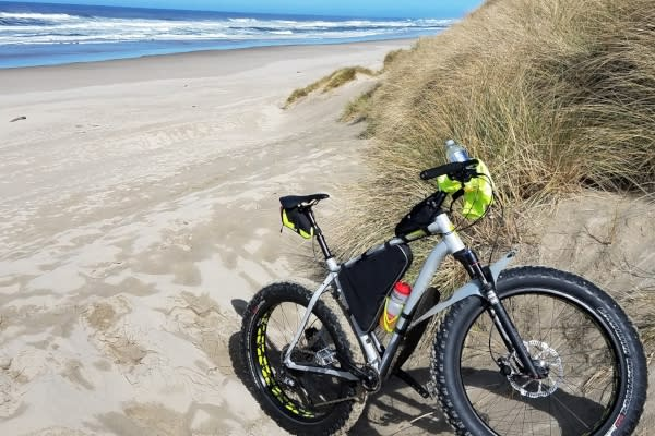 Fatboy Bike in the Sand Dunes by Scott Gamron