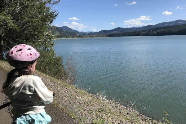 Gazing at Dorena Reservoir by Taj Morgan