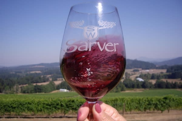 A Glass of Wine at Sarver Winery by Meg Trendler