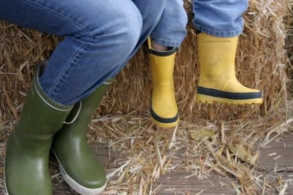 Northern Lights Christmas Tree Farm boots by Taj Morgan