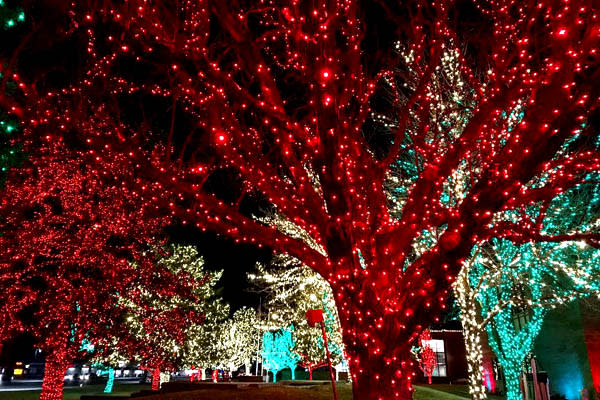 Holiday Lights in Utah Valley - Orem