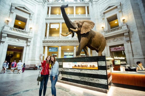 Smithsonian Natrual History Museum