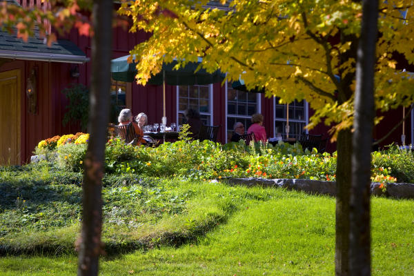 Dining at Elderberry Pond in the Fall