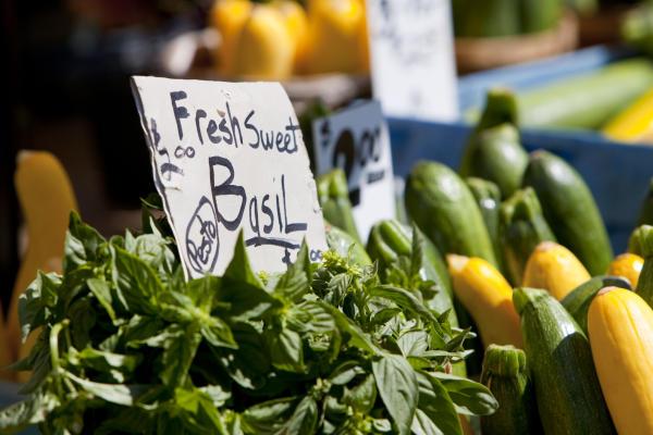 Auburn Farmers Market