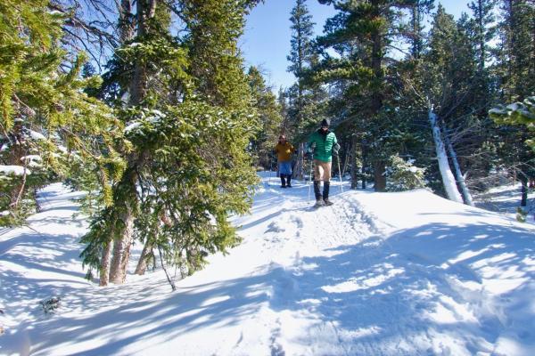 Snowshoeing near Denver