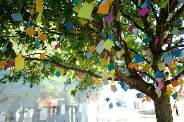 Colorful post it notes handing from the wishing tree at hte Dublin Irish Festival