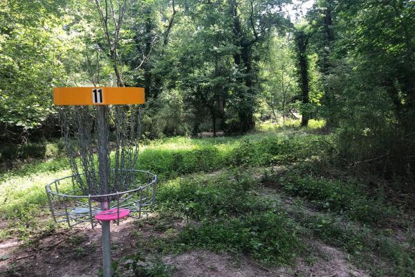 Disc Golf 12