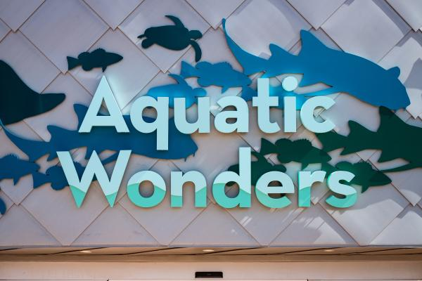 "A sign above the entrance of a building that reads ""Aquatic Wonders"""