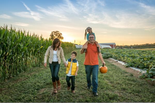 Family pumpkin picking