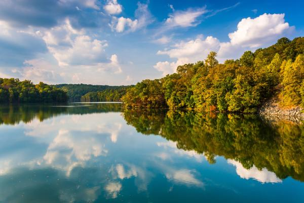 View of the Potomac River with trees and clouds in the crystal clear reflection