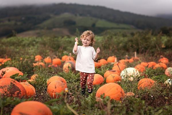 GCF Pumpkin Patch - stacymichelephoto