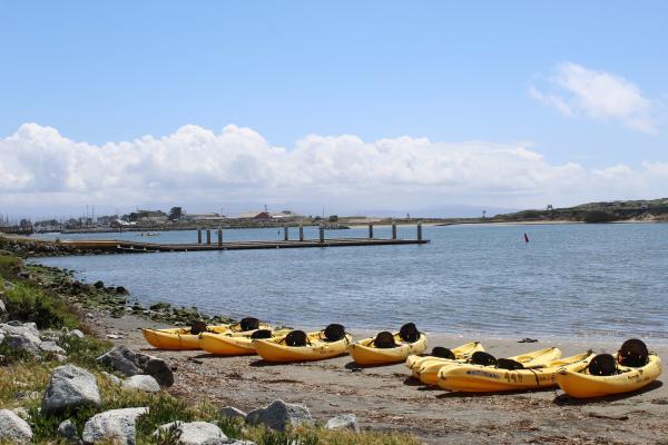 Moss Landing Kayaks