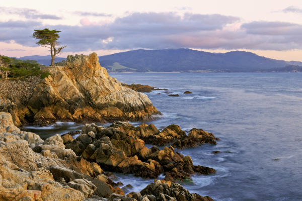 This bit of rugged coastline is home to a lone Cypress tree in Monterey County.