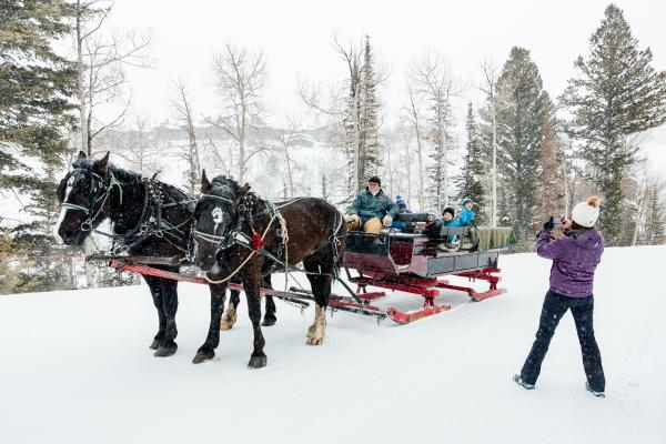 Mother taking photo of Family Sleigh Ride