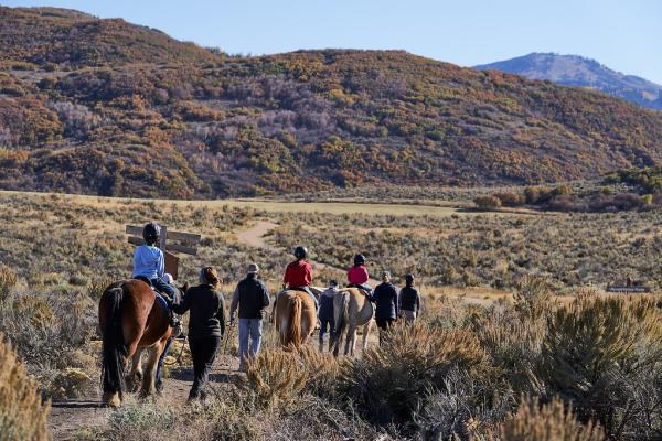 Group or people walking and riding horses on a trail