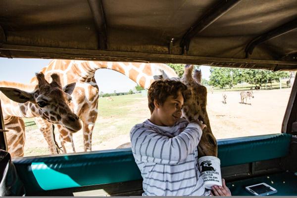 A boy feeding Giraffes at St. Tammany's Global Wildlife Center in Folsom, LA